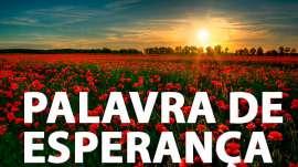 1 João 5:4,5 - Uma Palavra de Esperança para sua vida